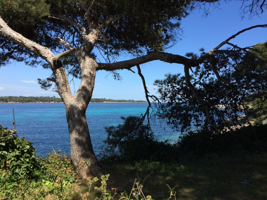 Île Saint Honorat